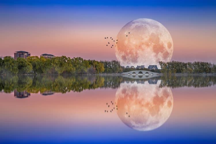 Mond bewundern